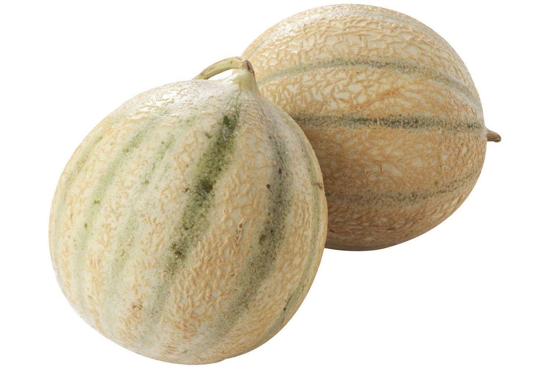 Charentais Meloen